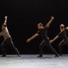 costard-danse-theatre