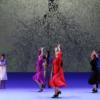 y-ole-flamenco-jose-montalvo